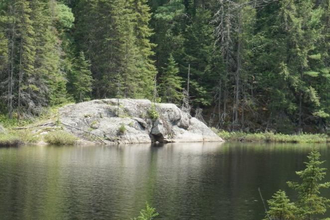 Algonquin Park Mizzy Lake Trail