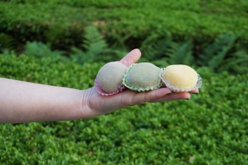 Mochi from Sasaki Fine Pastry Toronto