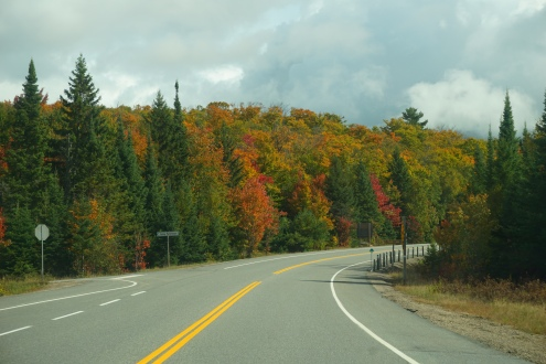 Highway 60 Algonquin Park Fall Colours