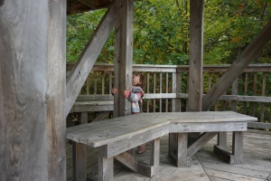 Visitors Centre Algonquin Park Fall Colours