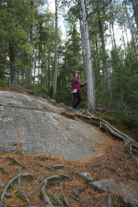 Algonquin Park Fall 2018 Two Rivers Trail Cliff
