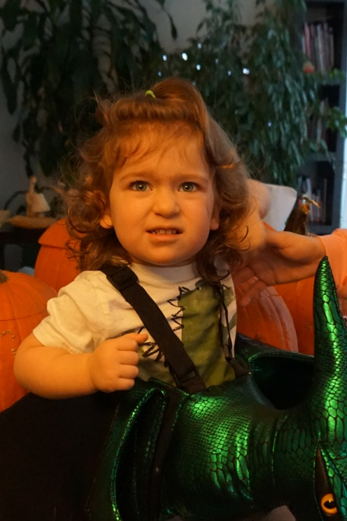 trick or treat halloween candy toddler dinosaur costume